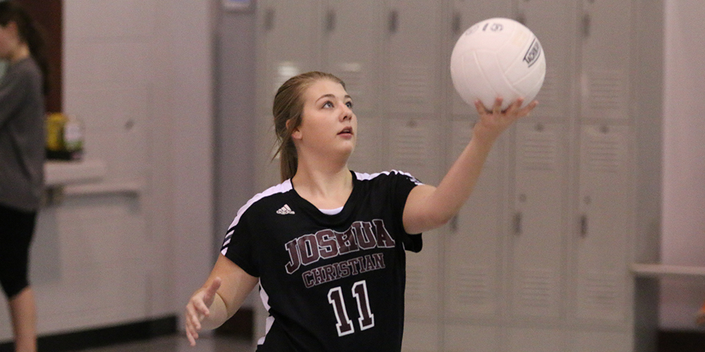 Volleyball 2 (1000x500)